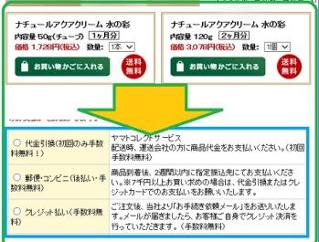 彩1.jpg